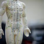 Biokinesiologie voor gevorderden